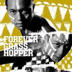 Forever Grasshopper Collection详情