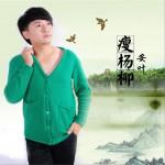 瘦杨柳 (单曲)详情