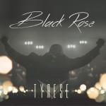 Black Rose详情
