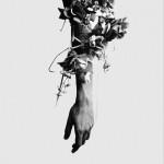 The Flowers Of Romance详情