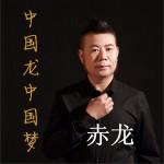 中国龙中国梦 (广场舞版单曲)详情