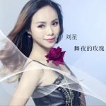 舞夜的玫瑰 (单曲)详情