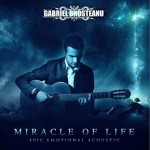 Miracle Of Life-Epic Emotional Acoustic详情