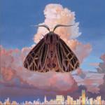 Moth详情