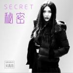 秘密 (单曲)详情
