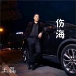 伤海 (单曲)详情