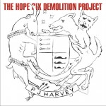 The Hope Six Demolition Project详情
