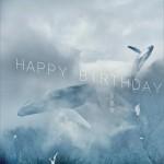Happy Birthday (单曲)详情