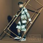 The Frame详情