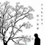 テニスの王子様 浜口祐夢.Sakura详情