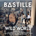Wild World详情