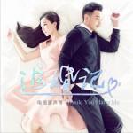 电视剧《追婚记》OST (EP)详情