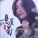 悬崖菊 (单曲)详情