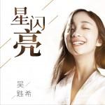 星闪亮 (单曲)详情