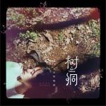 树洞 (单曲)