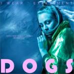 Dogs (单曲)试听