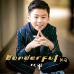 Wonderful 神奇 (单曲)详情