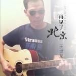 再见了北京 (单曲)试听