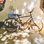 单车 (单车)详情