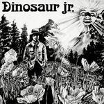 Dinosaur详情