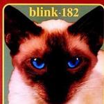 Cheshire Cat详情