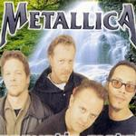Acoustic Metal详情