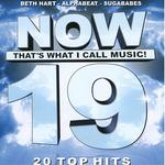 Now That's What I Call Music 19 (Danish Edition)详情