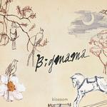 Vol.4-Blossom详情