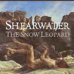 The Snow Leopard (EP)详情