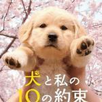 犬?#20154;餞?0の約束 与狗狗的10个约定详情