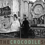 The Crocodile Society Of Aphasia详情