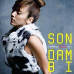 Son Dam Bi Remix Vol. 1详情
