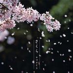 日本公信榜2005年百大单曲详情