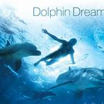 Dolphin Dreams 海豚之梦详情