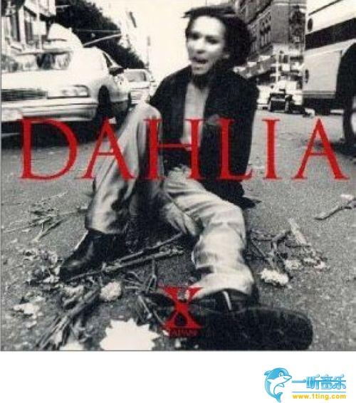 japan18avday_专辑封面:dahlia