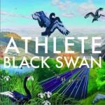 Black Swan详情