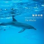 大自然音乐系列-鲸声奇遇 (周志宏)