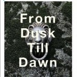 From Dusk Till Dawn (DARKER THAN BLACK 流星の双子 ED)详情