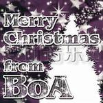 Merry Christmas From BoA详情