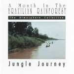 A Month In The Brazilian Rainforest: Jungle Journey详情