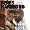 Beres Hammond Can't Waste No Time 试听
