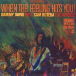 When The Feeling Hits You! Featuring Sam Butera & The Witnesses (US Release)详情