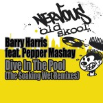 Dive In The Pool feat. Pepper Mashay - The Soaking Wet Remixes详情