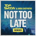 Not Too Late (Remixes)详情