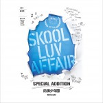 SKOOL LUV AFFAIR SPECIAL ADDITION详情