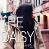 The Daisy ?????? 试听
