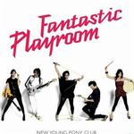 Fantastic Playroom详情
