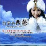 我要去西藏详情