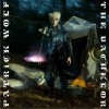 Patrick Wolf The Sun Is Often Out 试听